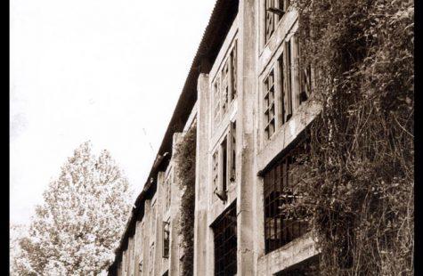 fornace-di-bressana-05